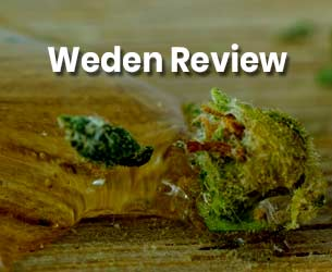 Weden Review - Promotes The Value of Cannabis
