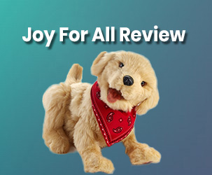 Joy for All Review