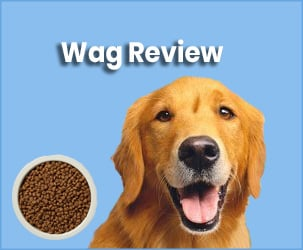 Wag Review