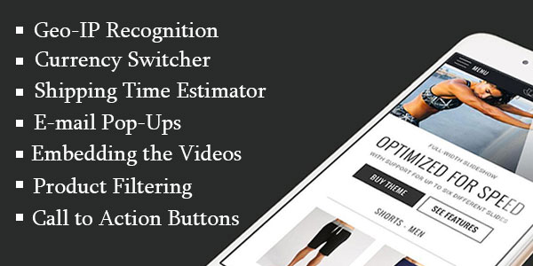 Features of Shoptimized Themes