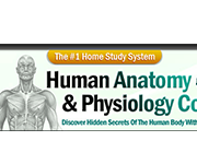Human Anatomy Course Coupons