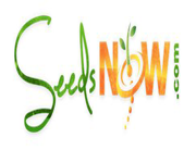 Seeds Now Coupon Codes